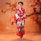 Clothing Wholesale - Import & Export > Japanese Kimono (Long) Wholesale - Import Export