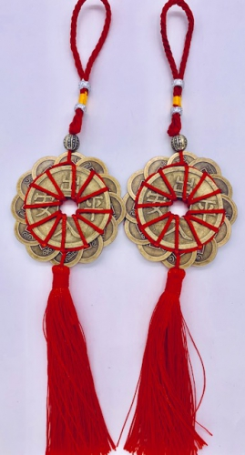 Chinese Lucky Coin with Signs Set 6
