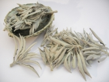 Wholesale - White Sage Leaves 500g ** AA quality **