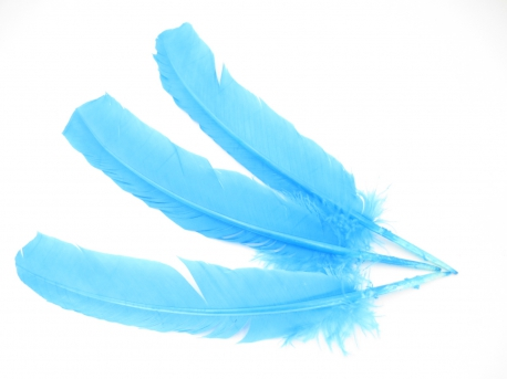 White Sage Smudge Feather turquoise (3 pieces) - wholesale
